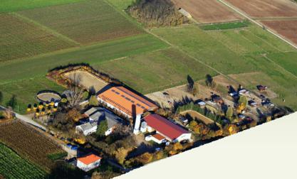 Reitanlage Illges-Holl